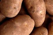 Продаём картошки оптом в Хабаровске с доставкой