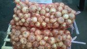 Продаём   лук свежий